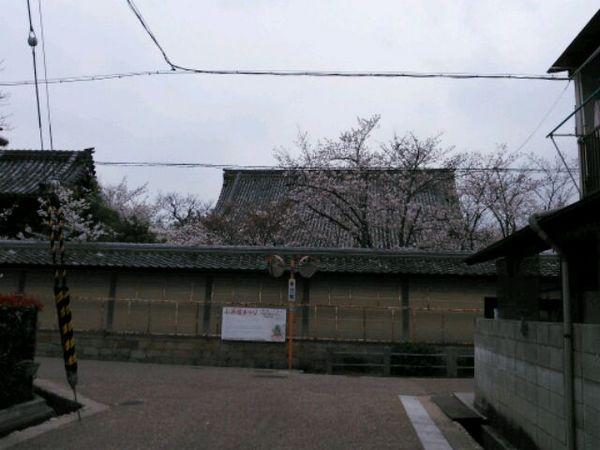 NCM_0133.JPG