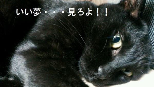 NCM_0684.JPG