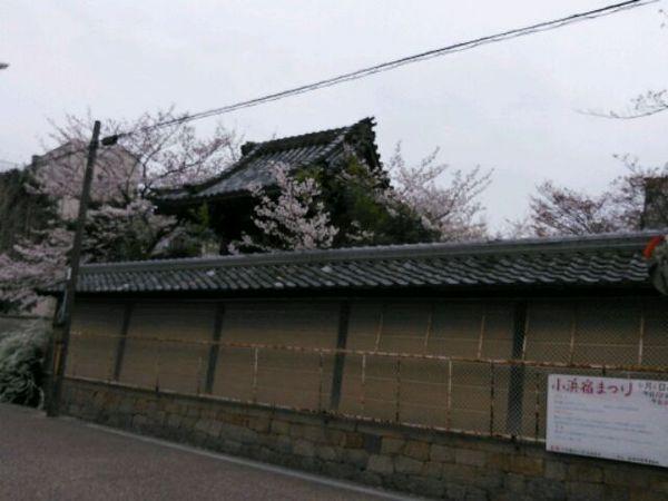 NCM_0135.JPG
